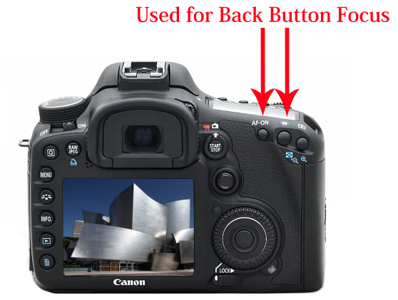 Back Button Focus
